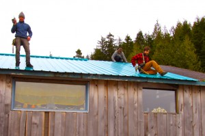 New deep-water green roof on RainSong Studio